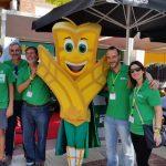Requena y Gandía reciben a la serpiente multicolor con entusiasmo y un nuevo récord en la Bicicleta Solidaria